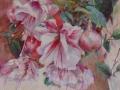 LEDRAPPIER Mireille-Fuschia rose.jpg