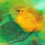 GINDRE Pascale 6.Oiseau dans un pin.jpg